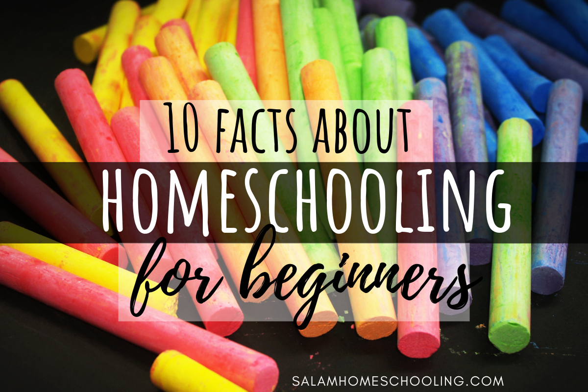 What is homeschooling like? why to homeschool for beginner